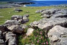 Irlanda trip