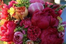 Mariage Multicolore °  Rainbow Wedding / Mariage multicolor, Couleurs vives et décoration qui fouette