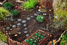 Garden / All that catches my eye for my own garden. Ideas!!!!!!!!