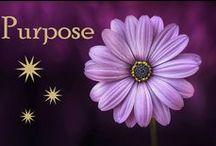 Purpose / Life purpose