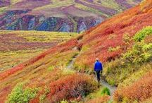 Hiking / Tips and tricks for your next hiking trip.