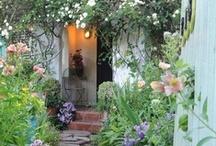 Ogrody / balkony