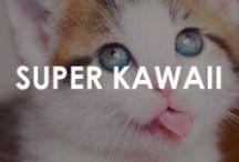Super Kawaii! / cuteness you can't deny! #kawaii