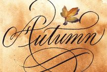 autumnal / beautiful cosy autumn, my most favourite season