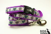Dog VISUAL / Original collars, leads and harness  for your darlings :)