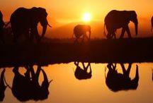 Weekend Getaways in Africa / Weekend Getaways in Africa