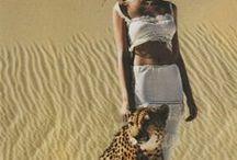 safari look