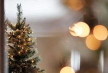 Christmas / Holidays season; Christmas related home decor, Christmas trees, packaging ideas and more.