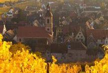 Curiositats del món del vi i destil·lats