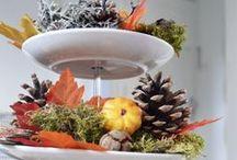 DIY - Herfst / Inspiratie voor herfst in huis.