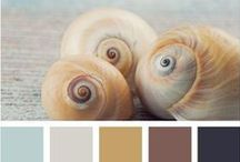 Color Your World / Color palettes for the home