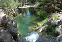 Epiphany Nature: Water / Lakes, Creeks, Rivers, Ocean, etc.   / by Beth Rogers