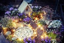 Fairy Gardening / Miniature gardening for every taste.