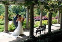 Virginia Weddings / Legendary VA weddings and wedding locations