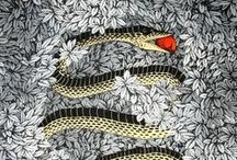 foulards & écharpes /