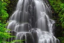 滝      Fall