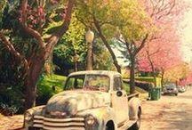 Seasons @ SLB...<3