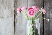 Pretty Flowers / bloemen om van te houden