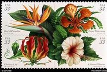 Stamps Флора