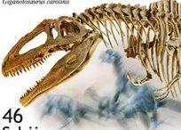Stamps Динозавры