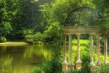 Garden / In my garden, that's where I love to be.  / by wendy herubin