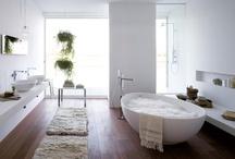 dreaming interiors