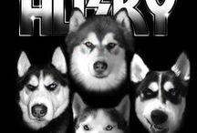 Husky Products that Rock!