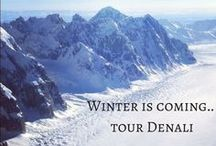 Winter is coming... Tour Denali / Winter in Denali National Park is gorgeous! Viewing Denali in the Winter is a truly magical visual experience. The low angle of the sunlight defines the icy folds and granite ridge tops in a unique way, and paints Denali in shades of peach, rose and fuchsia alpenglow in the morning. We are open everyday in winter and enjoy a higher percentage of clear days - great for our cold-weather visitors.. Take one of our winter flight seeing tours and witness this amazing view for yourself.