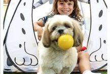A vida é melhor com pets! / Quem não é apaixonado por animais de estimação? A Lupo também acredita que #avidaemelhorcompets