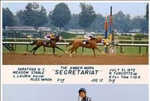 Back in the Day / Horse racing throughout history.