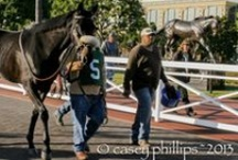 Notebook / America's Best Racing's weekly horse racing digital roundup, complete with videos, photos, blogs, tweets, news, celebrity interviews and more!