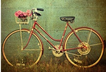 My Bike will have a Basket / by Sheena L