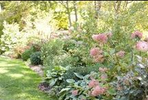 Gardens and Outdoor Photos / by Dash and Albert Rug Company