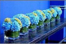* flowers *