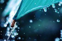Acqua | Turqouise Blue