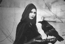 The Raven Saga NEW BOOK COMING SPRING 2015 ;) / Shhhhhhhh...... more details to come soon