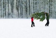 ॥Winter॥
