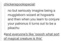 Harry Potter related
