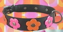 Mary Candy Dog Collars / Reflective Safety Dog Collars