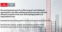 Consumer Growth / Finding profitable growth opportunities is difficult, but need not be unscientific. There is a structured approach for identifying, quantifying and prioritising these opportunities; but organisational inertia must be overcome to succeed in delivering growth.