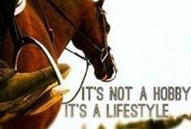 For the <3 of Horses... / Inspired by my Skye, the only pony for me