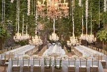 Wedding Ideas / by Leila L
