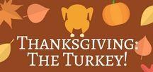 Thanksgiving: The Turkey!