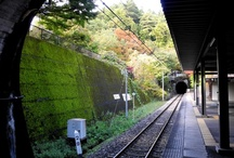 Tochigi(Japan)