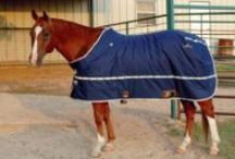 Horsecity Store / Get all your gear and horse accessories in the Horsecity.com store.