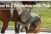 """Hoof Care - By Vettec / Vettec Hoof Care introduces an educational hoof care video series with Tab Pigg, CJF. Learn more about thrush, laminitis, founder, white line disease and more. Spend """"2 Minutes with Tab"""" Today!"""