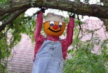Fall at Davison Orchards
