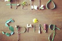 Hello Spring / Fresh ideas for decorating with flowers in Spring.