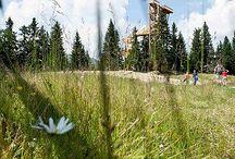 Bergerlebniswelt Ratschings / Die Bergerlebniswelt in Ratschings ist ein Erlebnis für einen Familienurlaub in Südtirol. Direkt vom Naturhotel Rainer im Jaufental aus zu erreichen. Nahe dem Jaufenpass in Südtirol ist es ein beliebtes Ausflugziel für ruhesuchende Urlauber in Sterzing.