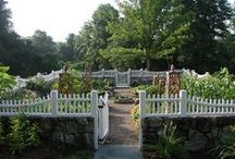 My Secret Garden / by Lisa Cauthon